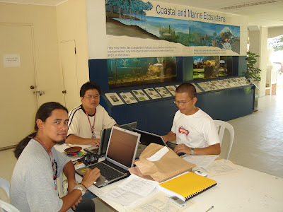 Online Courses for College in the Philippines Online Courses for College in the Philippines